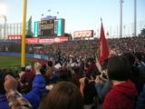 スポーツの秋2010早慶戦 (42)