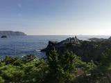 20200814_神津島 (65)