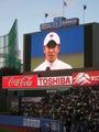 スポーツの秋2010早慶戦 (31)