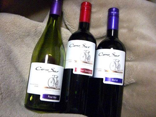 100211-wine-conosur