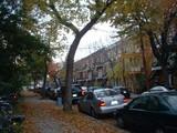 秋のご近所MTL