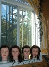 窓際のマネコ達