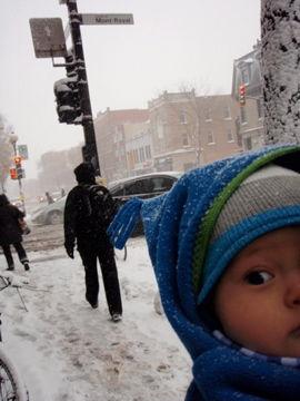 11月23日雪の中