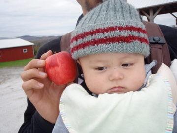 りんごと大河