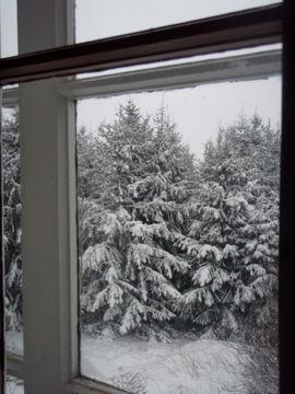 12月31日大晦日窓から