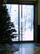 お家からの雪景色