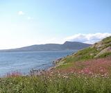 ボナヴォンチュール島から眺める景色