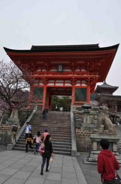 Apr10,2012 八坂神社