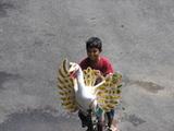 JMバイク散策22