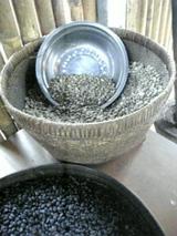 バリのコーヒー豆