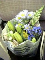 10月25日お花
