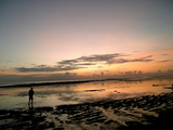 JMも朝日を見ようと海に近づく