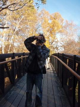 モンモランシーの滝6