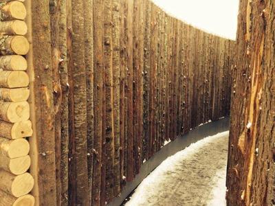 woodartmtroyal