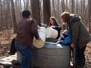 大きいバケツに樹液をうつす