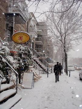 11月23日初雪