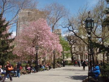 市庁前の公園