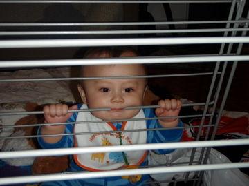 Feb6, 2012洗濯干しをガブっ