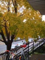 何度めの秋やろう?