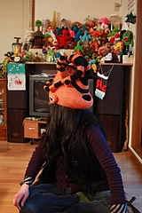 Insect helmet - 17-1