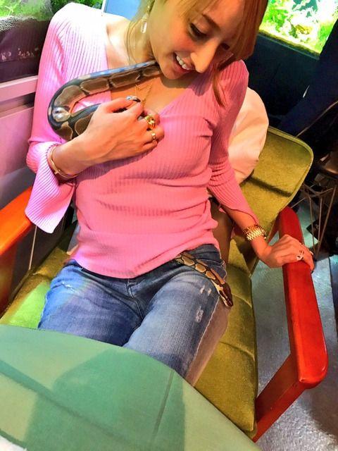 【画像】加藤紗里さん、エッチなヘビにスケベなことされるwww