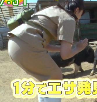 尾崎里紗って尻大きい割に小さなパンティーはくよな