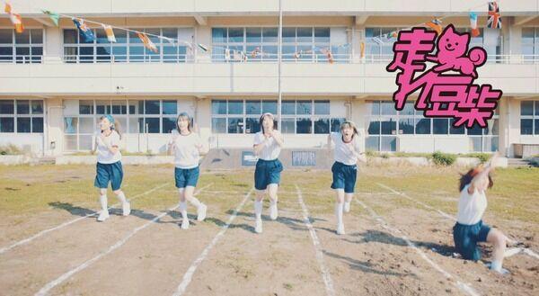 【動画】豆柴の大群、スクール水着姿を披露 番組ネタ盛り込んだ新曲MV公開!