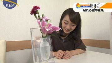 大江麻理子 相内優香 片渕茜(テレ東)171030 WBS