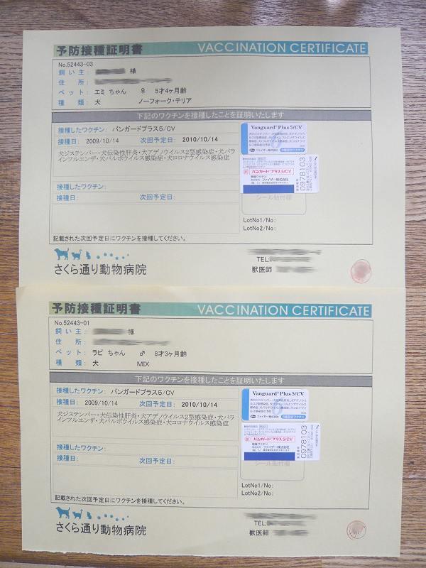 7b407a12.jpg