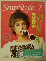 SnipStyle