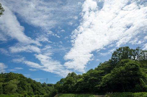 散策 [梅雨の晴れ間] : RICOH GR