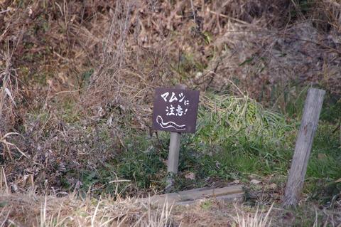 散策 [舞岡公園]:K-r + SMC PENTAX-DA 18-250mm F3.5-6.3 ED AL