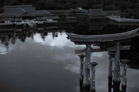 散策 [東武ワールドスクウェア/厳島神社] : D800E + AF-S NIKKOR 70-200mm f/2.8G ED VRII