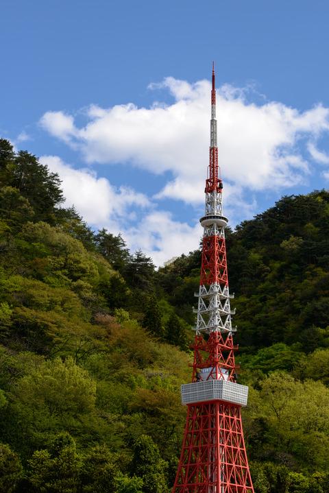 散策 [東武ワールドスクウェア/東京タワー] : D800E + AF-S NIKKOR 70-200mm f/2.8G ED VRII