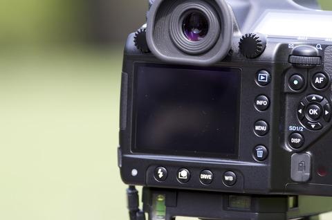 試し撮り [新宿御苑] : PENTAX K-01 + SMC PENTAX-DA* 300mm F4 [IF] SDM
