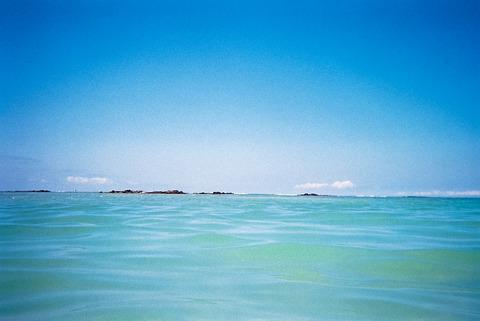 海 [ハワイ] : 水に強い写ルンです New Waterproof