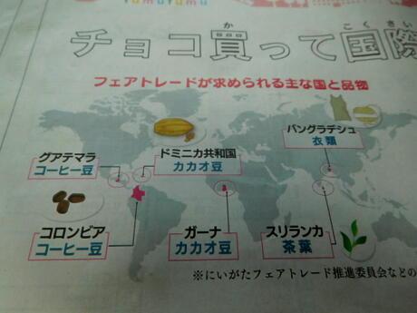 2019.03.07   花と新聞DSCN9415