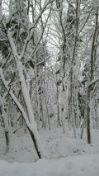 あさみ雪景色2