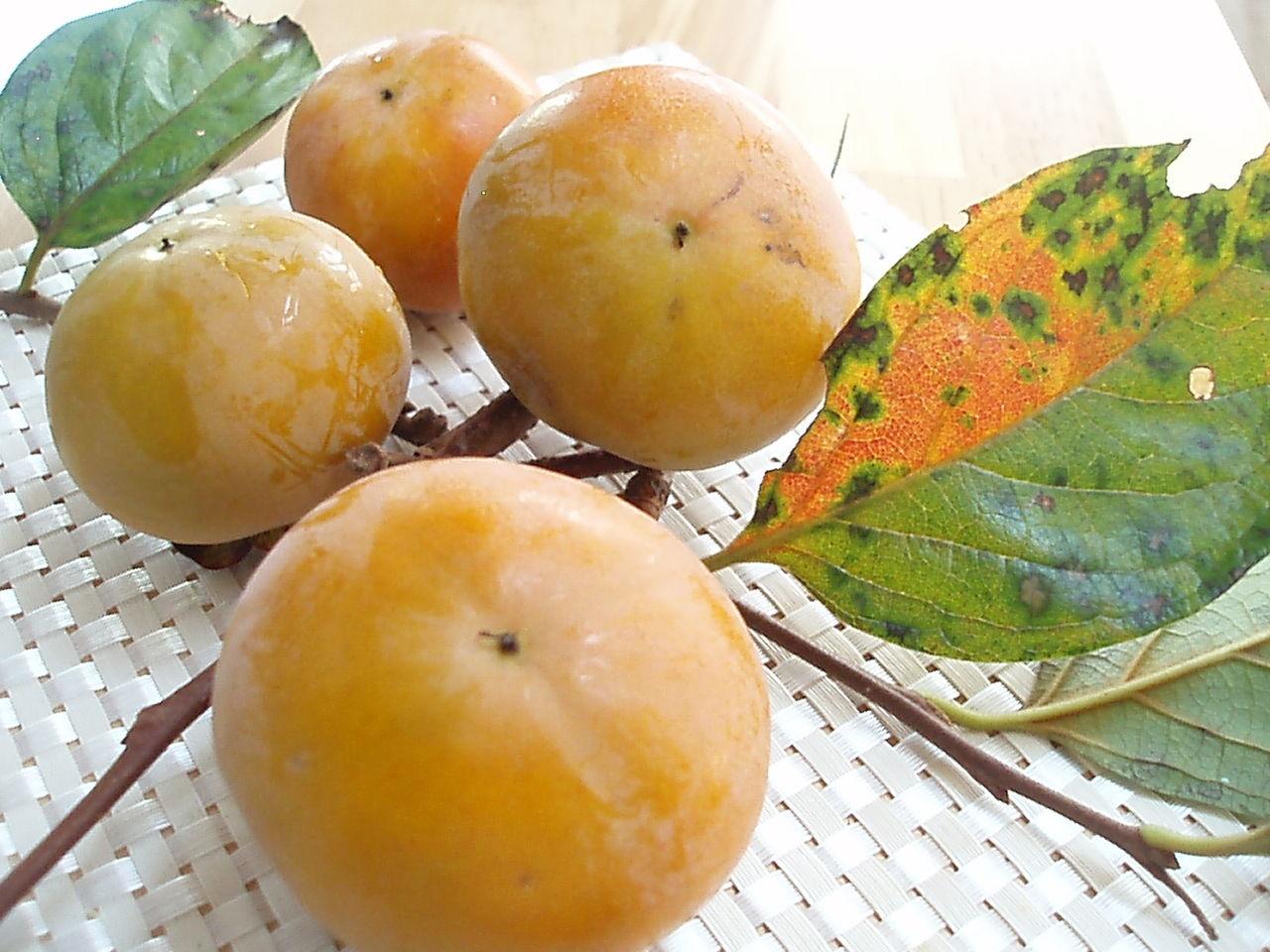 PA084462 柿 貴重な柿です~笑   我が家の畑からアスパラ、柿
