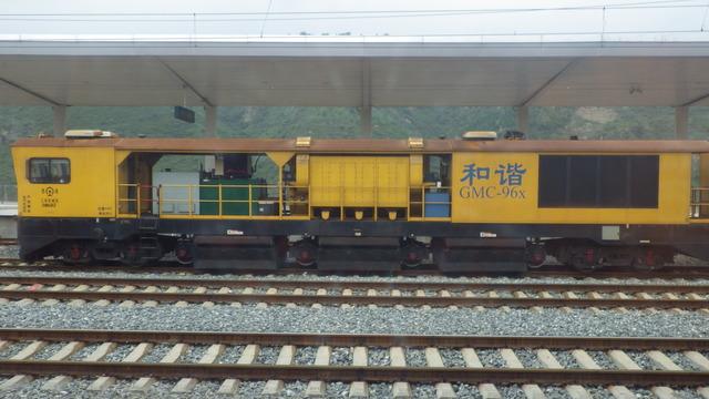 IMGP2315