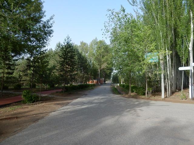 DSCN9092