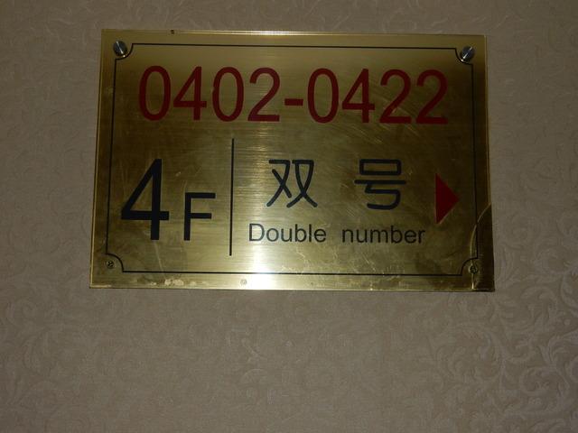 DSCN8493