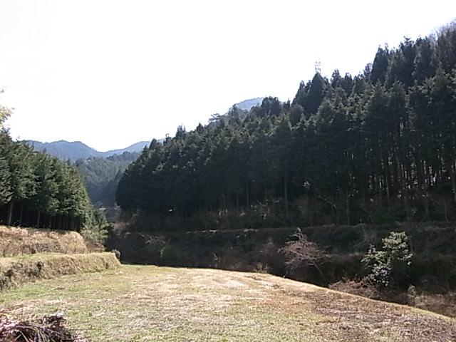 RIMG1684