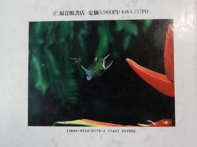 DSCN6388