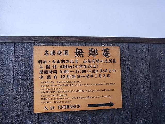 RIMG6278