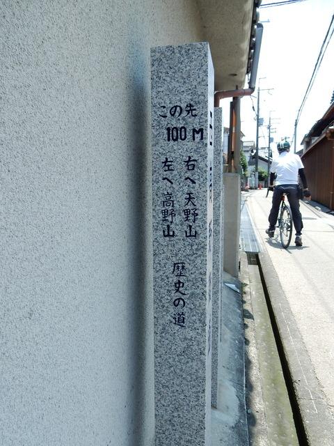 DSCN8101