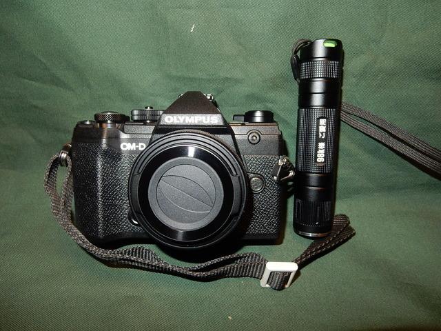 DSCN9336