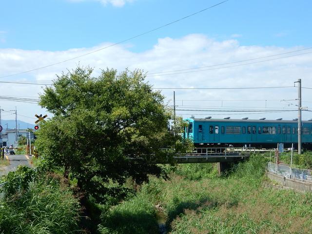 DSCN5600