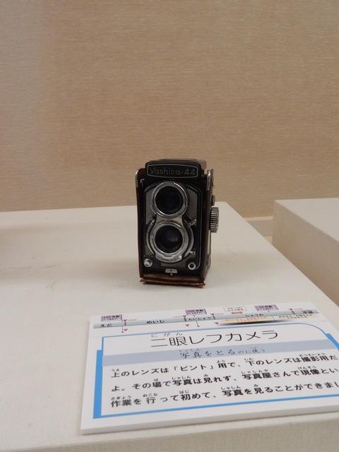 DSCN7106