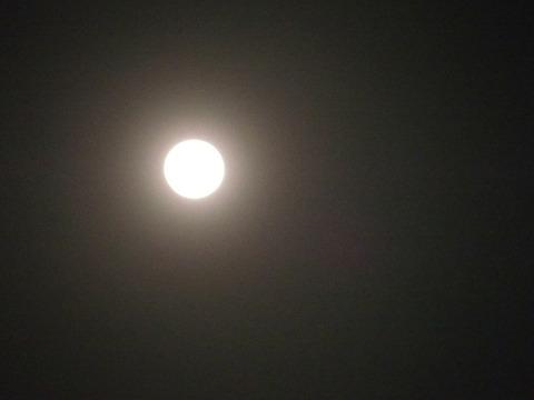2020.4.8満月コロナーa